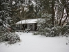 zendo-eastside-in-snow-r