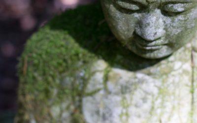 "True Buddhism is not ""Buddhism"""